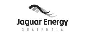 sl-jaguar-energy